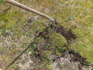 芝生の剥がし方